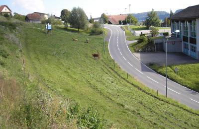 Das Bauland befindet an der Dorfstrasse in der Ortschaft Uffikon im Kanton Luzern.